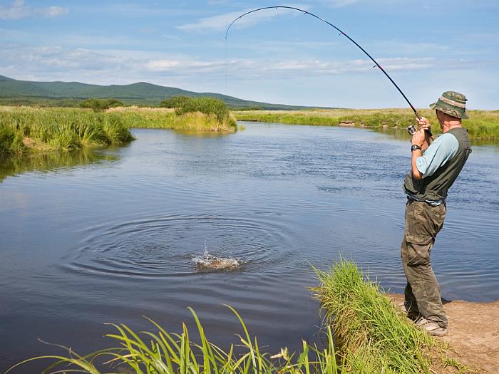 zadarmo on-line datovania veľa rýb
